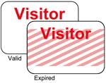 Brady Visitor Badges LITE