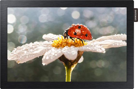 Samsung DB-E Series Digital Signage Display