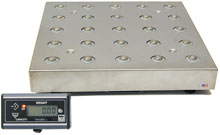 Brecknell 9503-16679 Scale